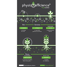 physio efficience